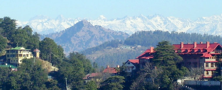 shimla-rev-slider-01
