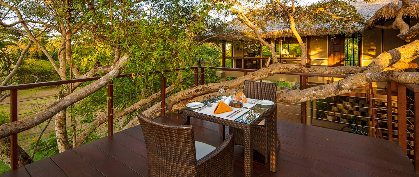 10 Best And Affordable Resorts In Jim Corbett National Park